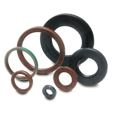 NBR/ Viton Oil Seal